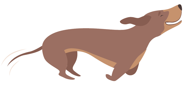 running-dachshund-graphic